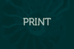 Print Design in San Francisco Bay Area, San Rafael, CA
